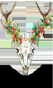 logo rykowisko polskie ostre sosy