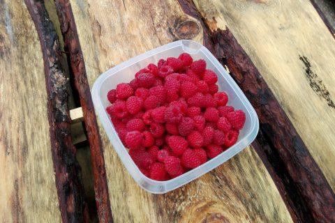 owoce maliny ekologiczne